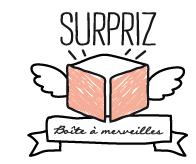 ♡J'ai testé : la boite à merveilles de Surpiz !