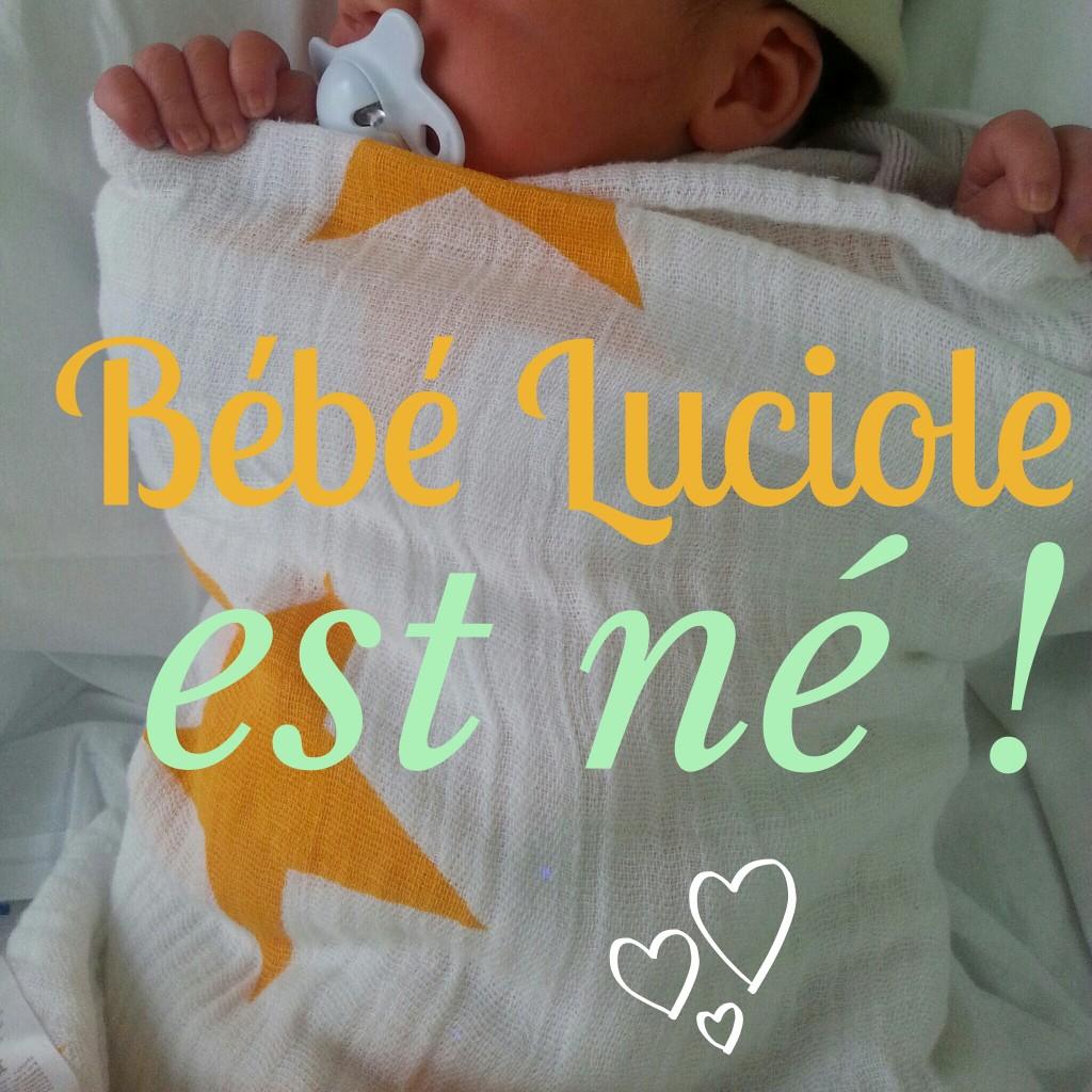 Notre bébé Luciole est ne !
