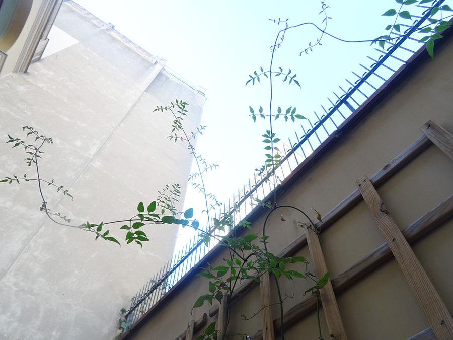 Notre petite terrasse à Barcelone  Notre petite terrasse à Barcelone  Notre petite terrasse à Barcelone  Notre petite terrasse à Barcelone  Notre petite terrasse à Barcelone