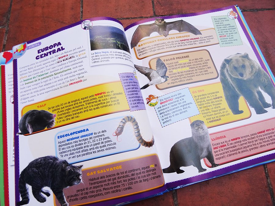 Petite sélection pour tout savoir sur les animaux