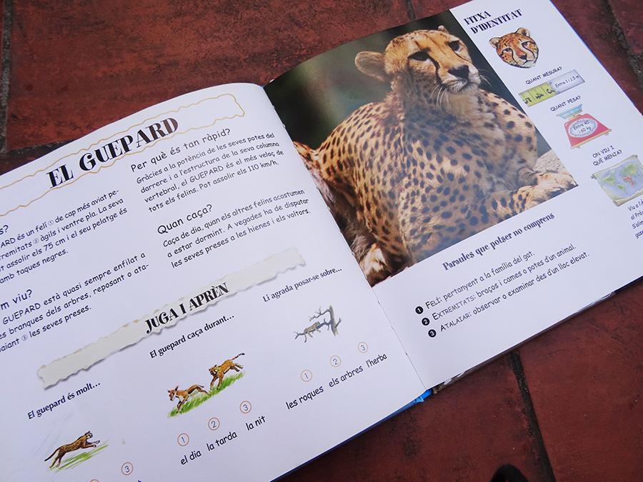 Petite sélection pour tout savoir sur les animaux  Petite sélection pour tout savoir sur les animaux  Petite sélection pour tout savoir sur les animaux  Petite sélection pour tout savoir sur les animaux  Petite sélection pour tout savoir sur les animaux