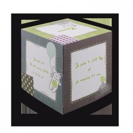 faire-part-naissance-sucre-orge-c4917-cube-personnages