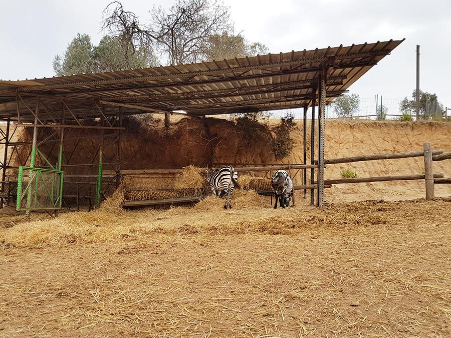 Activités près de Barcelone : La ferme de Can sala  Activités près de Barcelone : La ferme de Can sala  Activités près de Barcelone : La ferme de Can sala  Activités près de Barcelone : La ferme de Can sala