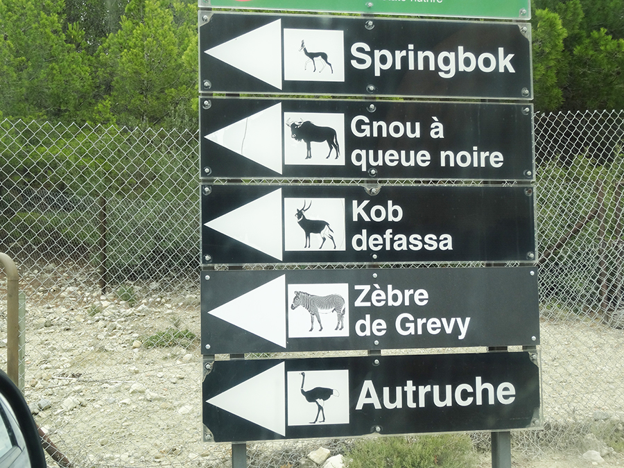Un week end à la réserve Africaine de Sigean