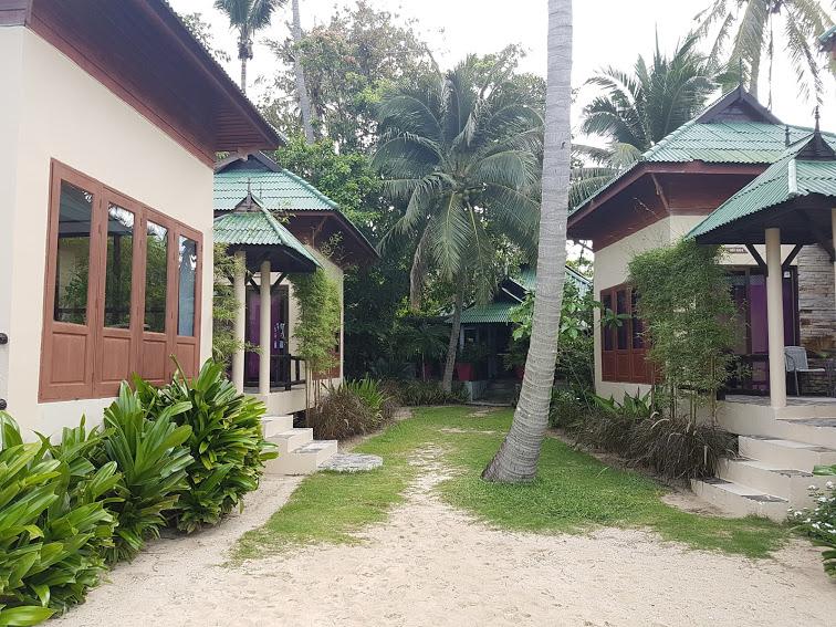 Seetanu bungalows, Malibu beach, à dos d'éléphants à Koh Phangan  Seetanu bungalows, Malibu beach, à dos d'éléphants à Koh Phangan  Seetanu bungalows, Malibu beach, à dos d'éléphants à Koh Phangan  Seetanu bungalows, Malibu beach, à dos d'éléphants à Koh Phangan  Seetanu bungalows, Malibu beach, à dos d'éléphants à Koh Phangan  Seetanu bungalows, Malibu beach, à dos d'éléphants à Koh Phangan  Seetanu bungalows, Malibu beach, à dos d'éléphants à Koh Phangan