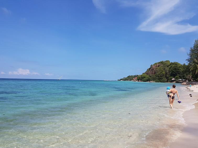Seetanu bungalows, Malibu beach, à dos d'éléphants à Koh Phangan  Seetanu bungalows, Malibu beach, à dos d'éléphants à Koh Phangan  Seetanu bungalows, Malibu beach, à dos d'éléphants à Koh Phangan  Seetanu bungalows, Malibu beach, à dos d'éléphants à Koh Phangan  Seetanu bungalows, Malibu beach, à dos d'éléphants à Koh Phangan  Seetanu bungalows, Malibu beach, à dos d'éléphants à Koh Phangan  Seetanu bungalows, Malibu beach, à dos d'éléphants à Koh Phangan  Seetanu bungalows, Malibu beach, à dos d'éléphants à Koh Phangan  Seetanu bungalows, Malibu beach, à dos d'éléphants à Koh Phangan  Seetanu bungalows, Malibu beach, à dos d'éléphants à Koh Phangan  Seetanu bungalows, Malibu beach, à dos d'éléphants à Koh Phangan  Seetanu bungalows, Malibu beach, à dos d'éléphants à Koh Phangan  Seetanu bungalows, Malibu beach, à dos d'éléphants à Koh Phangan  Seetanu bungalows, Malibu beach, à dos d'éléphants à Koh Phangan  Seetanu bungalows, Malibu beach, à dos d'éléphants à Koh Phangan  Seetanu bungalows, Malibu beach, à dos d'éléphants à Koh Phangan  Seetanu bungalows, Malibu beach, à dos d'éléphants à Koh Phangan  Seetanu bungalows, Malibu beach, à dos d'éléphants à Koh Phangan  Seetanu bungalows, Malibu beach, à dos d'éléphants à Koh Phangan  Seetanu bungalows, Malibu beach, à dos d'éléphants à Koh Phangan  Seetanu bungalows, Malibu beach, à dos d'éléphants à Koh Phangan  Seetanu bungalows, Malibu beach, à dos d'éléphants à Koh Phangan  Seetanu bungalows, Malibu beach, à dos d'éléphants à Koh Phangan  Seetanu bungalows, Malibu beach, à dos d'éléphants à Koh Phangan  Seetanu bungalows, Malibu beach, à dos d'éléphants à Koh Phangan  Seetanu bungalows, Malibu beach, à dos d'éléphants à Koh Phangan  Seetanu bungalows, Malibu beach, à dos d'éléphants à Koh Phangan  Seetanu bungalows, Malibu beach, à dos d'éléphants à Koh Phangan