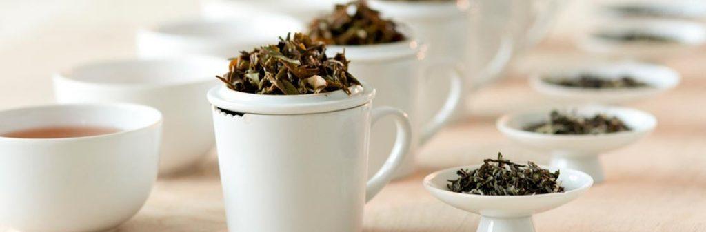À la découverte de la QuintEssence du thé