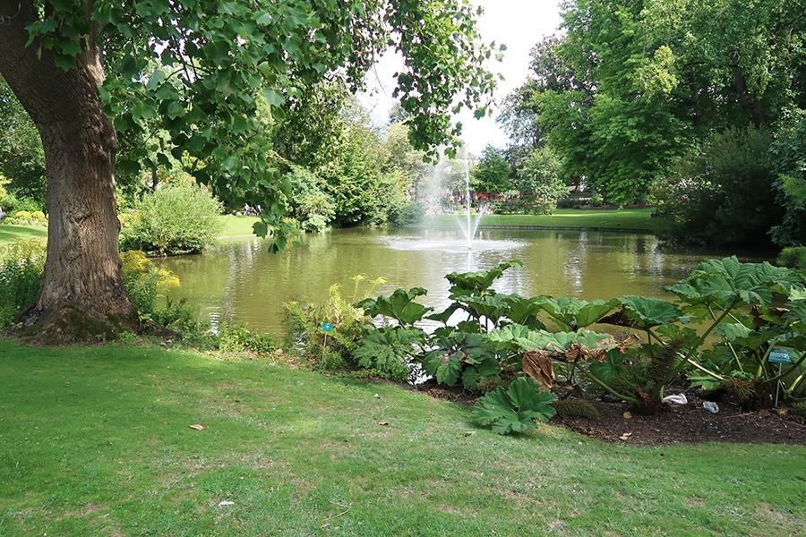 Nos vacances à Nantes : Jardin des plantes et miroir d'eau  Nos vacances à Nantes : Jardin des plantes et miroir d'eau  Nos vacances à Nantes : Jardin des plantes et miroir d'eau