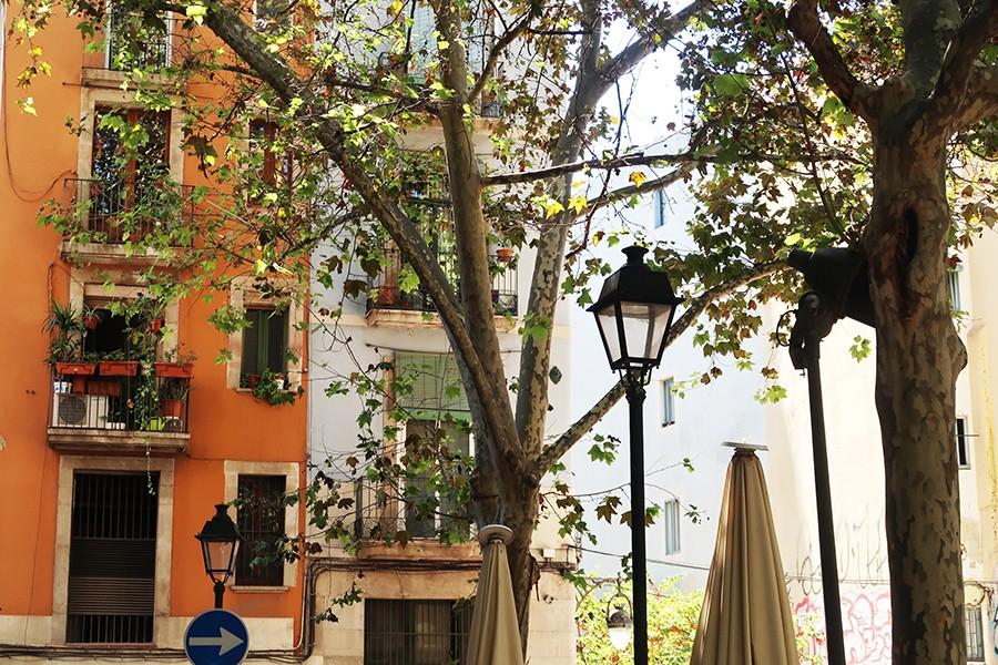 Balade à Barcelone : le Raval