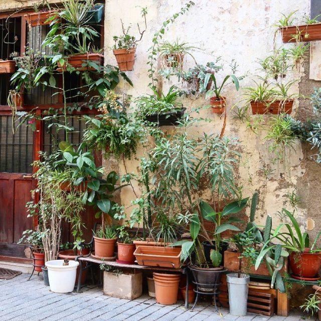 Born  Barcelona Un jour jarrtais de prendre en photohellip
