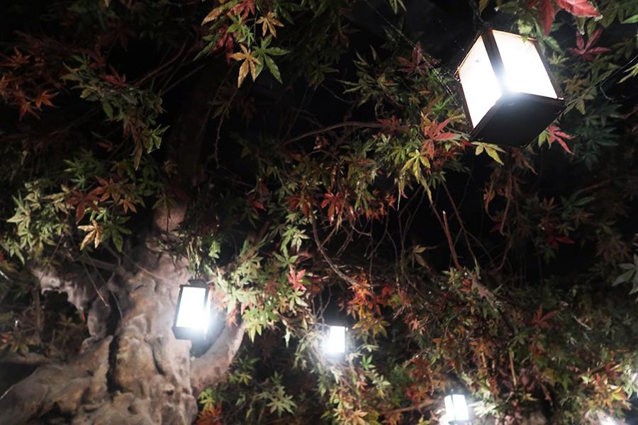 Goûter à Barcelone : el bosc de les fades  Goûter à Barcelone : el bosc de les fades  Goûter à Barcelone : el bosc de les fades  Goûter à Barcelone : el bosc de les fades  Goûter à Barcelone : el bosc de les fades  Goûter à Barcelone : el bosc de les fades  Goûter à Barcelone : el bosc de les fades  Goûter à Barcelone : el bosc de les fades  Goûter à Barcelone : el bosc de les fades  Goûter à Barcelone : el bosc de les fades  Goûter à Barcelone : el bosc de les fades  Goûter à Barcelone : el bosc de les fades