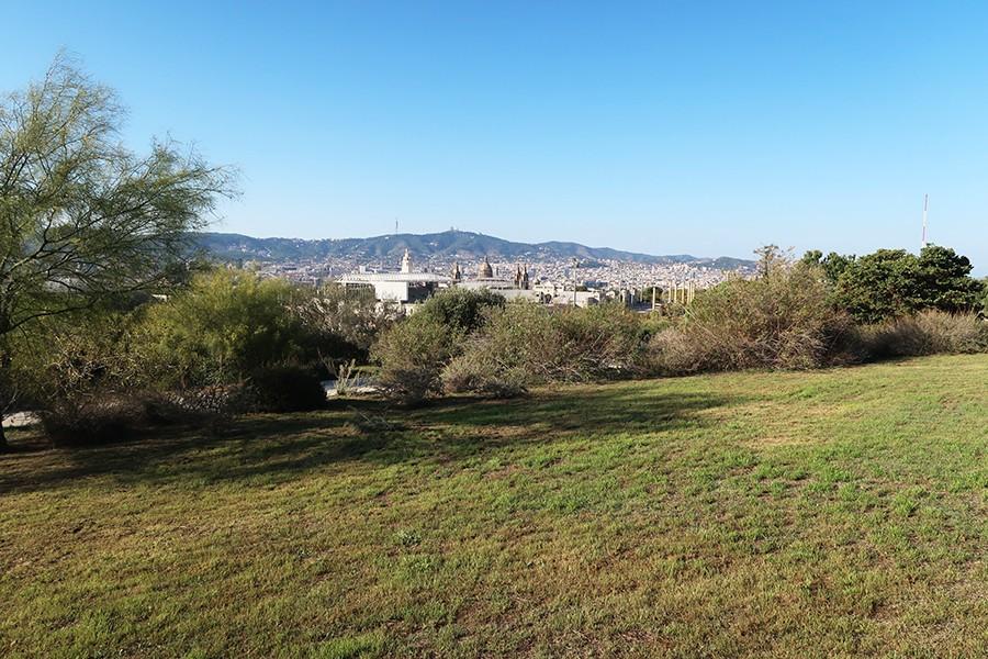 Balade à Barcelone : Le jardin botanique  Balade à Barcelone : Le jardin botanique  Balade à Barcelone : Le jardin botanique  Balade à Barcelone : Le jardin botanique