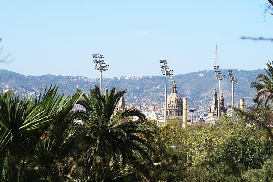 Balade à Barcelone : Le jardin botanique