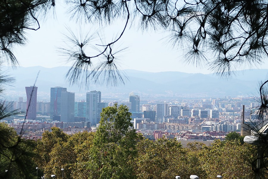 Balade à Barcelone : Le jardin botanique  Balade à Barcelone : Le jardin botanique  Balade à Barcelone : Le jardin botanique