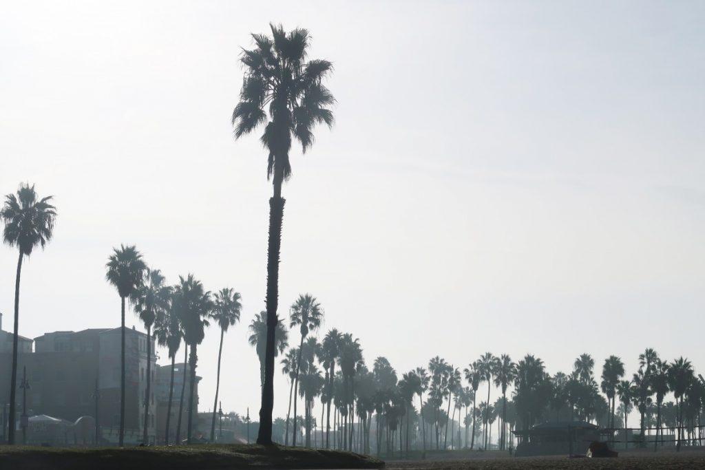 Los Angeles en famille  Los Angeles en famille  Los Angeles en famille  Los Angeles en famille  Los Angeles en famille  Los Angeles en famille