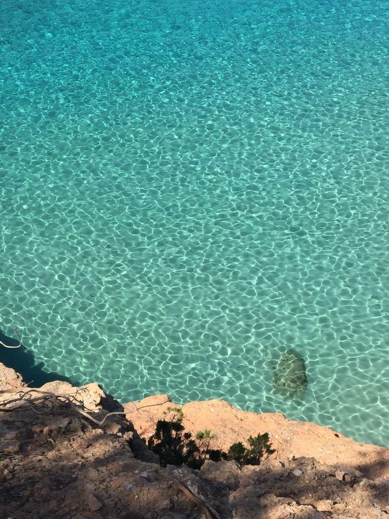 Nos prochaines vacances : Ibiza à petit prix en famille !  Nos prochaines vacances : Ibiza à petit prix en famille !  Nos prochaines vacances : Ibiza à petit prix en famille !
