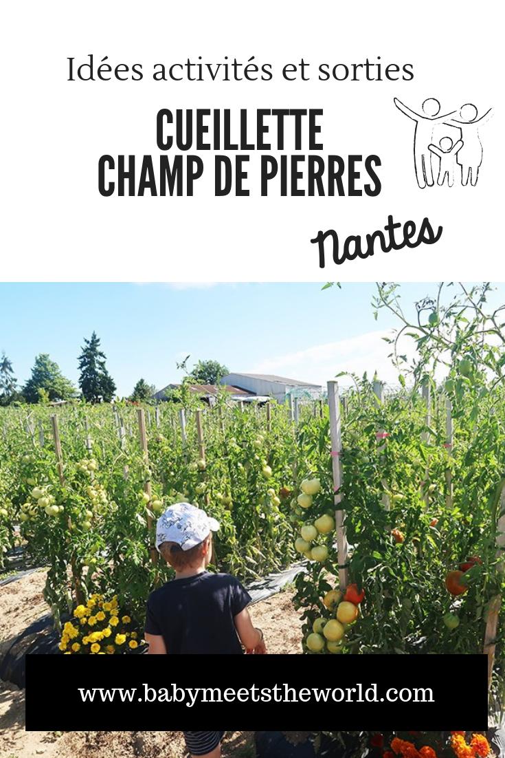 Nantes en famille : une matinée cueillette au Champ de pierres