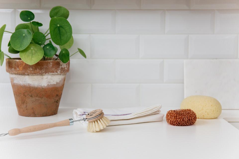 brosse a vaisselle en bois