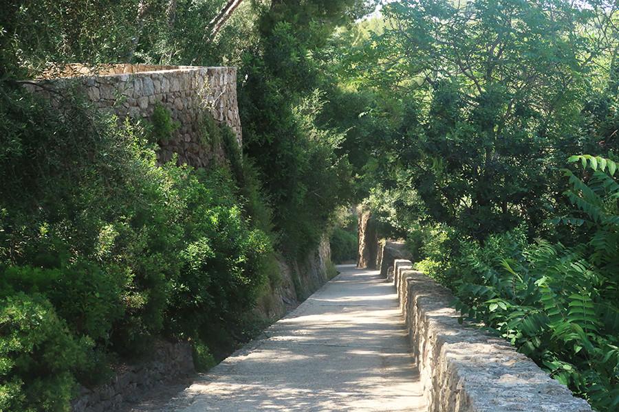 balade nature à barcelone