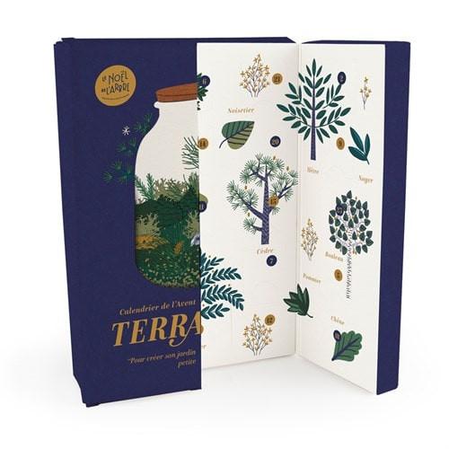 calendrier de l'avent terrarium