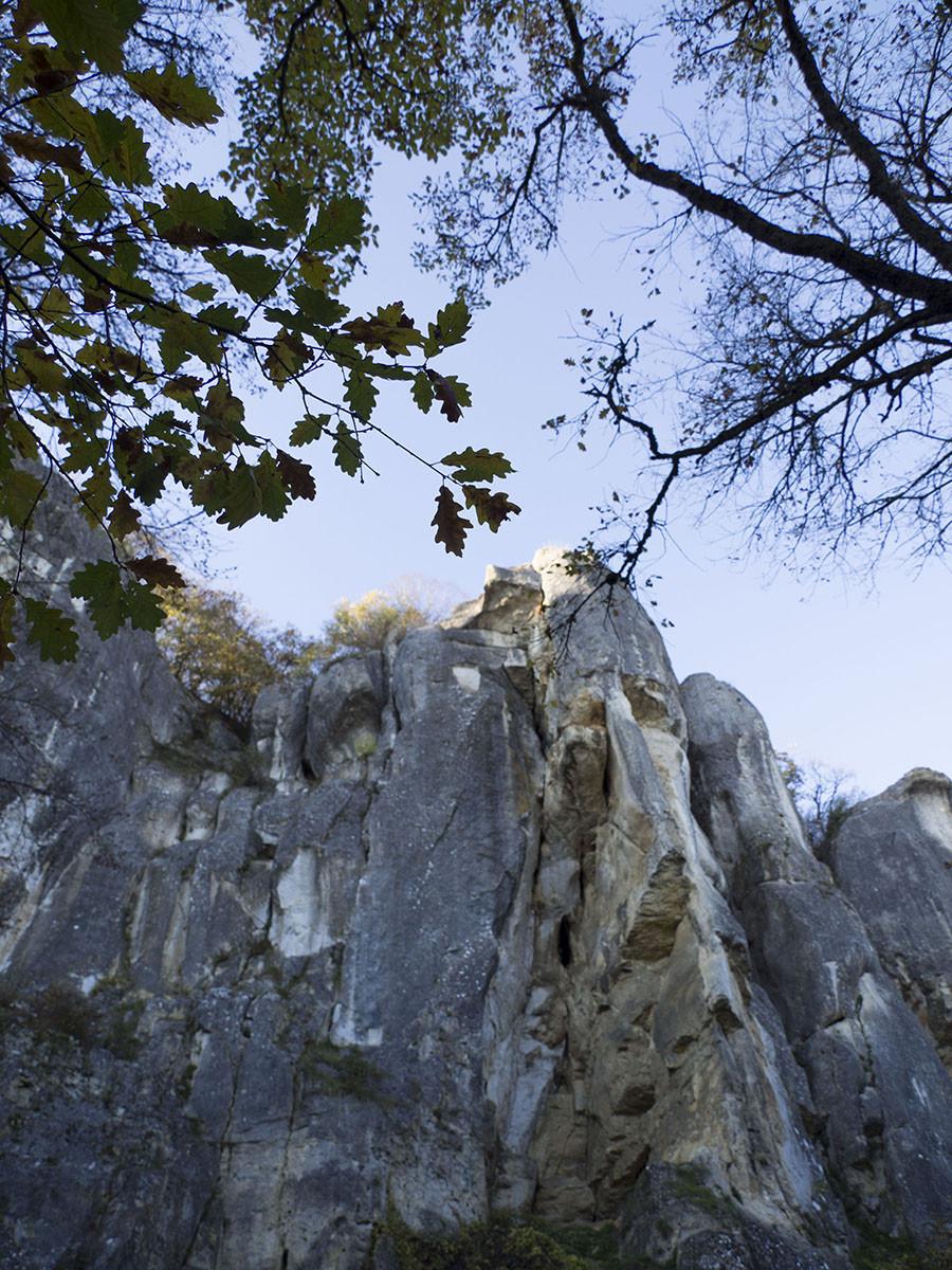 roche de basseville