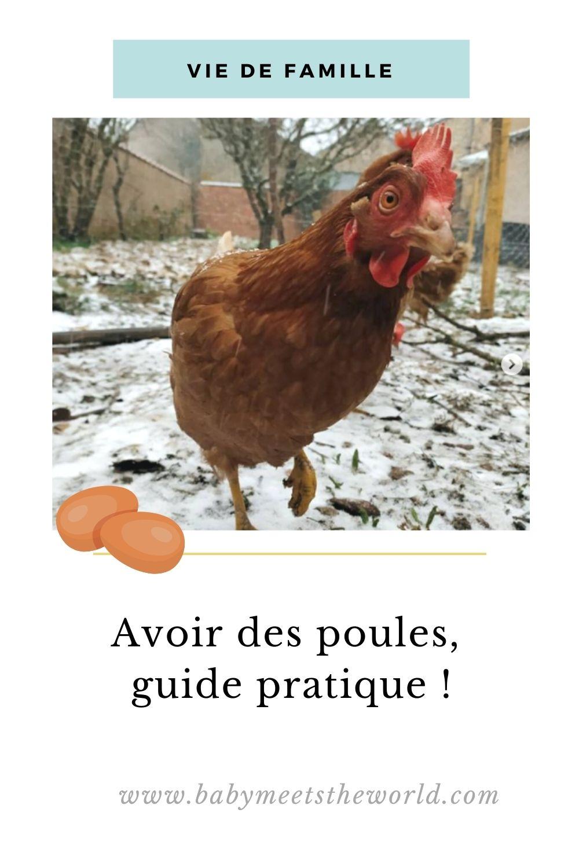 avoir des poules